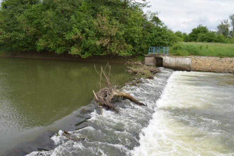 Канал Верке – екологічна біда Берегова (ФОТО)