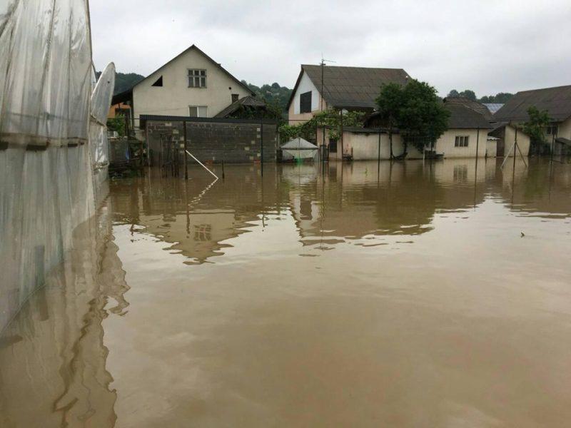 Сотні гектарів землі пішли під воду: на Виноградівщині ліквідовували наслідки травневої негоди (ФОТО)