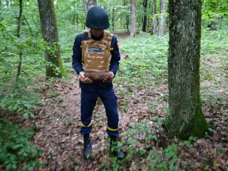 Жителька Мукачева шукала у лісі гриби, а знайшла артснаряд