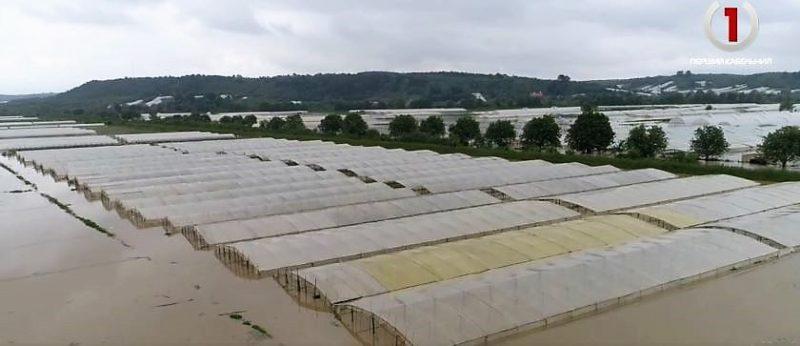 """Іршавщина: вода за лічені години знищила всі теплиці """"поліетиленової"""" долини (ВІДЕО)"""
