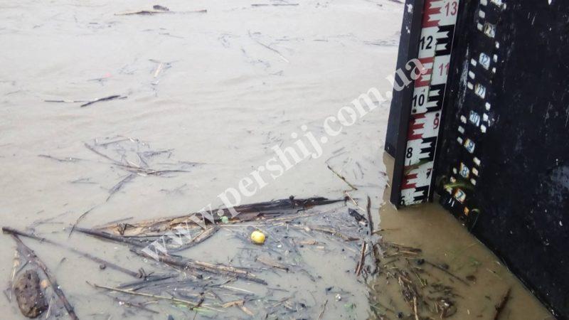 У Сваляві ріка Латориця перетворилась на руйнівний потік (ВІДЕО)