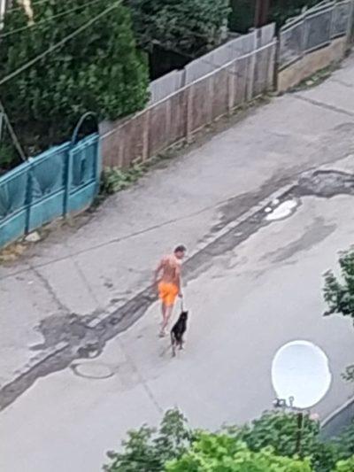 Невідомий чоловік б'є собаку, називаючи це дресируванням