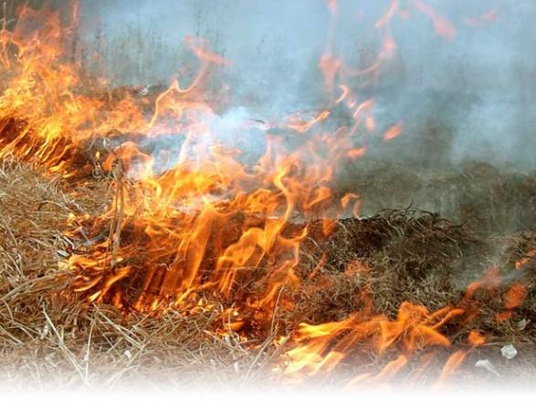 На Закарпатті очікують Шторм НЯ та надзвичайну пожежну небезку
