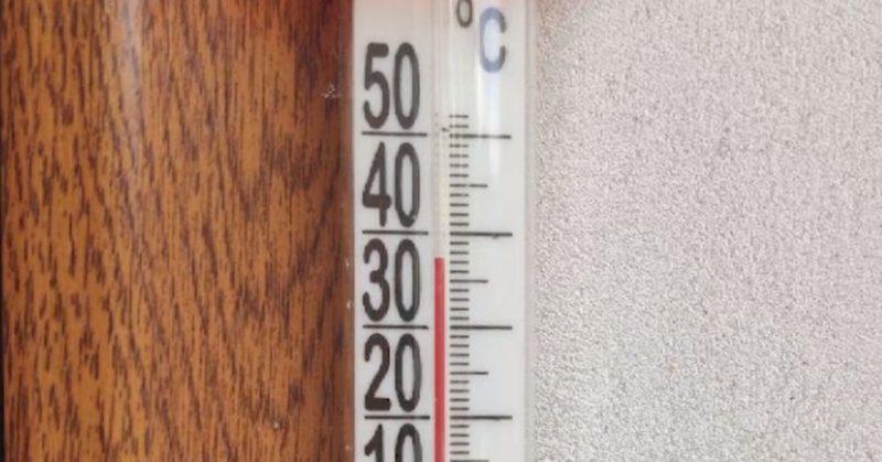 Температурні рекорди: червень на Закарпатті став найспекотнішим за останні 55 років (ВІДЕО)