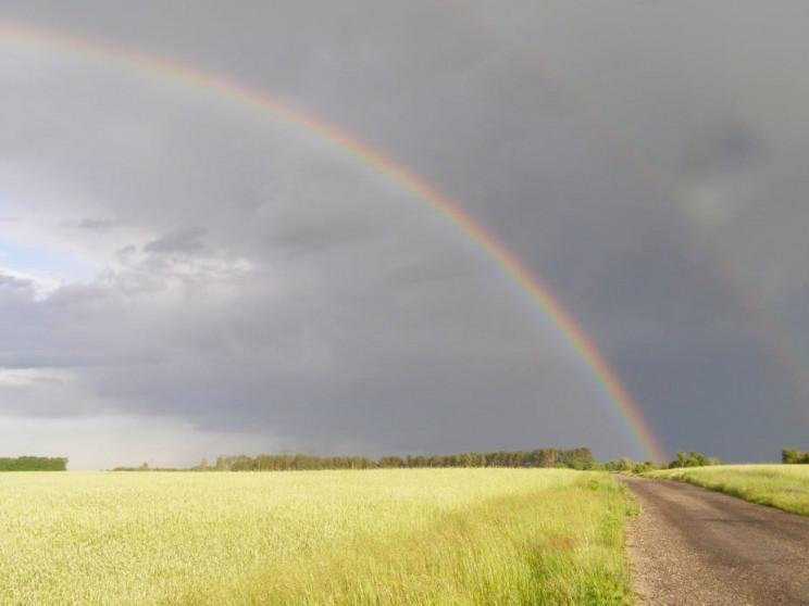 Спека та грози: відомо, якою буде погода на Закарпатті наступного тижня