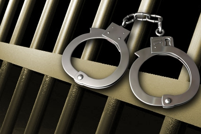 """На Берегівщині заарештовано """"дует"""" іноземців, які займалися переправкою нелегалів"""