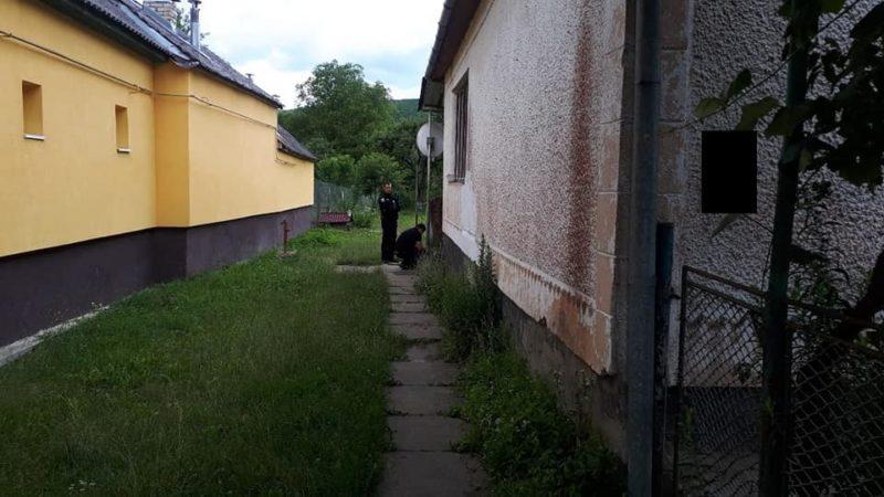 На Свалявщині 25-річний чоловік ледь не до смерті забив свого тестя