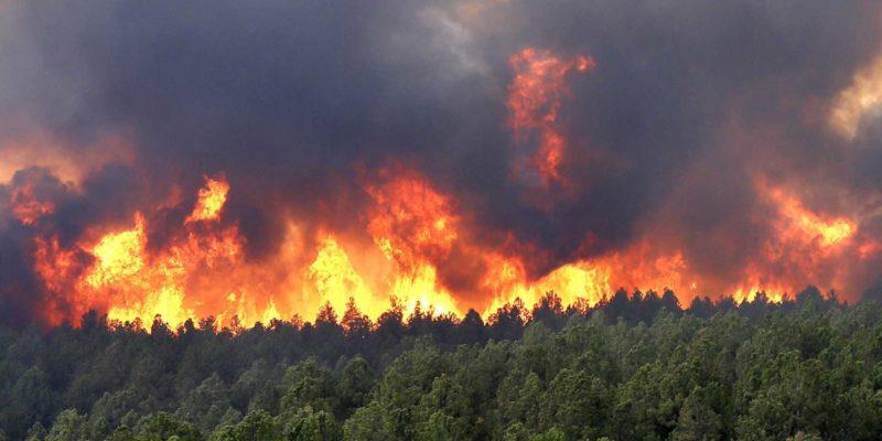 Подія, про яку говорить увесь світ: у Сибіру лісова пожежа охопила вже майже 4 мільйони гектарів