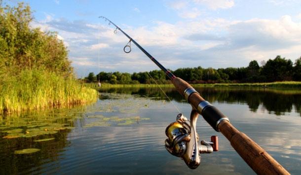 На Закарпатті на кілька місяців заборонили масовий вилов риби (ПЕРЕЛІК ОБ'ЄКТІВ)