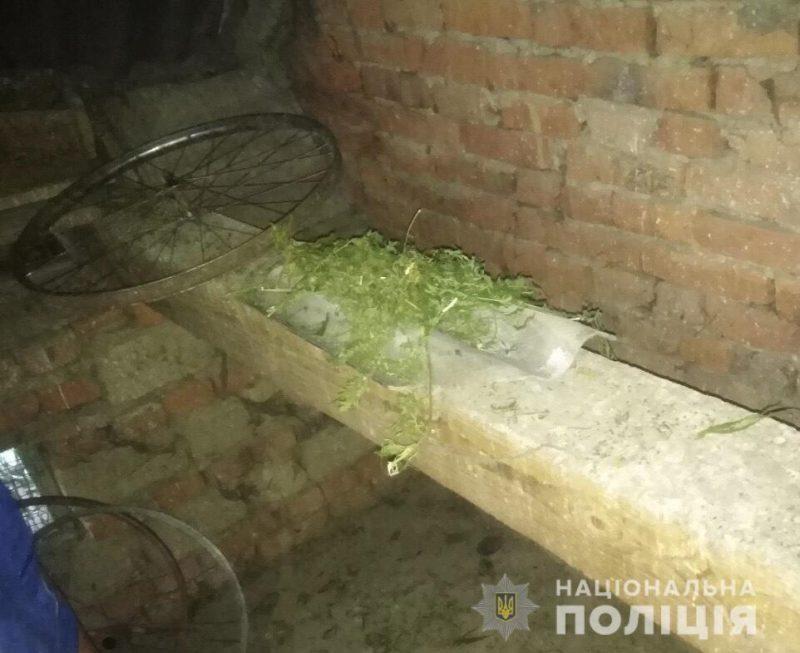 Мукачівські копи знайшли маріхуану в будинку сімнадцятирічного юнака (ФОТО)