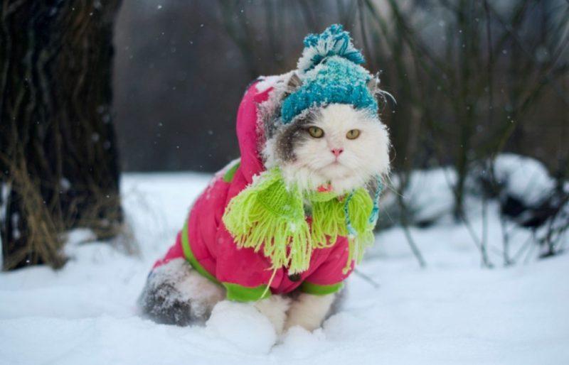 Морози до -21°: в Україну йде сувора зима – синоптик