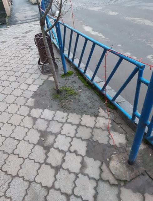 У Іршаві вандали зіпсували святкову ілюмінацію (ФОТО)