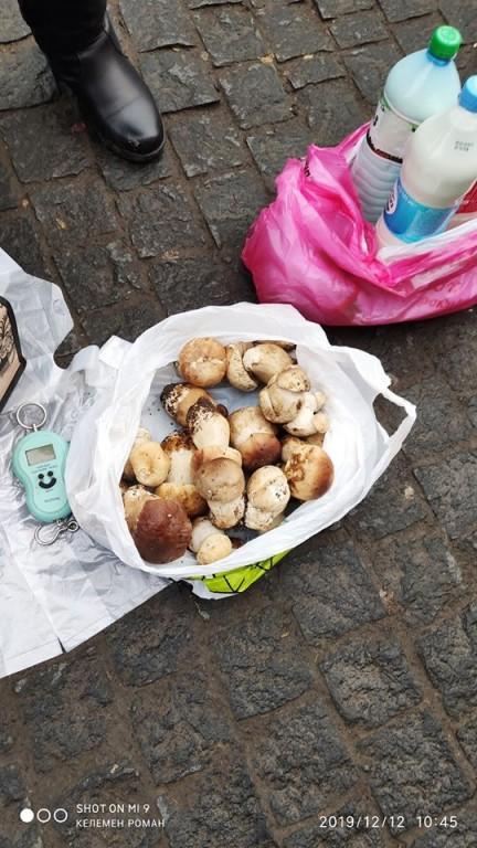 Зима закарпатцям не перешкода: в області активно продають свіжі гриби (ФОТО)