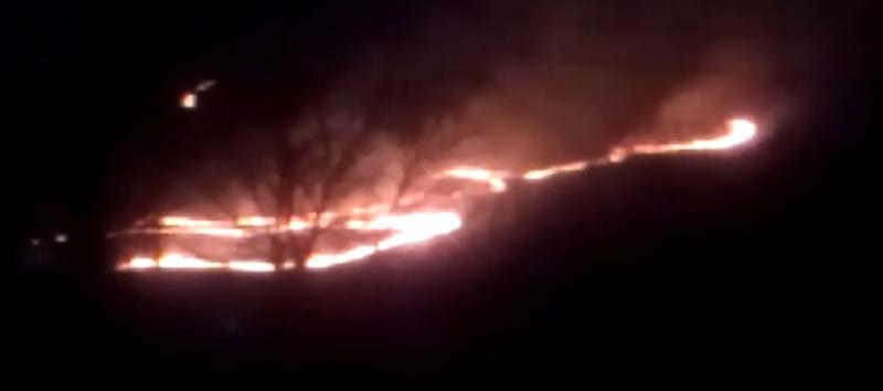 Вогонь вирував на Рахівщині – пожежники не могли дістатись (ВІДЕО)