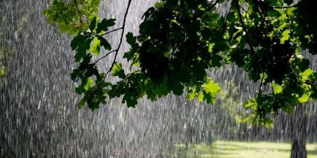 На Закарпаття суне циклон, який принесе сильні тропічні опади (ВІДЕО)