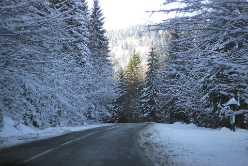 Зима у квітні на Закарпатті: засніжена Рахівщина (ВІДЕО)
