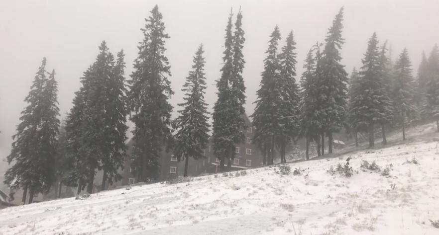 Зима близько: Рахівщину вкрило білою ковдрою снігу