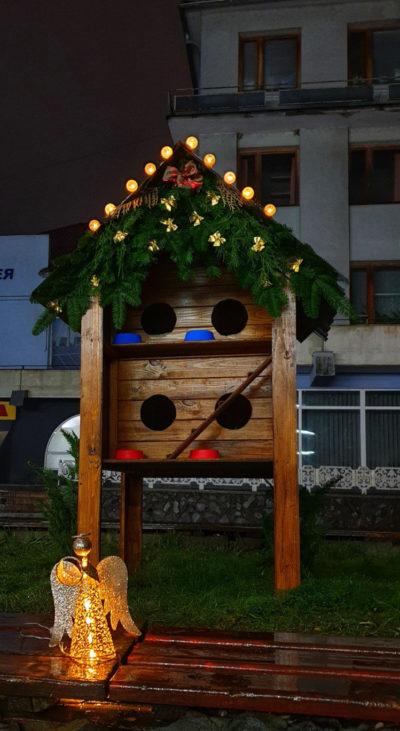 Різдвяна ініціатива: у Мукачеві з'явився будинок для котів (ФОТО)