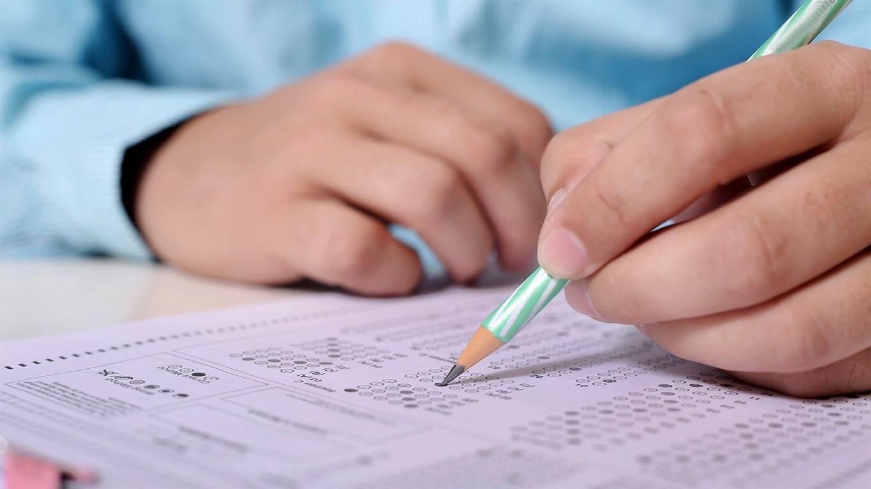 Ужгородські школярі готуються до здачі ЗНО (ВІДЕО)